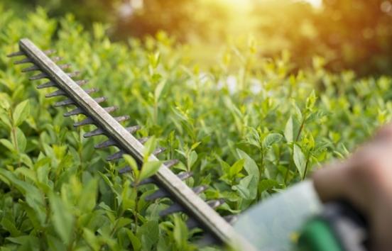 Paysagiste 78 : Aménagement jardin dans les Yvelines